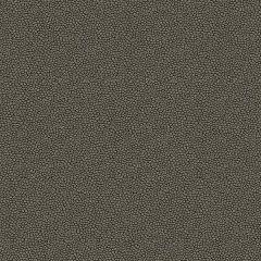 Kravet Contract Izzie Metal 32267-21 Crypton Incase Collection Indoor Upholstery Fabric