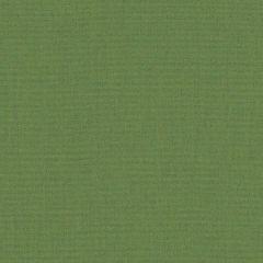 Sunbrella Canvas Granny SJA 3945 137 European Collection Upholstery Fabric