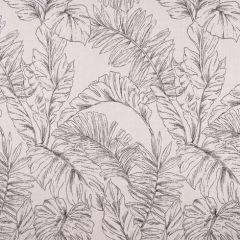 Sunbrella Calm Graphite 145854-0001 Balance Collection Upholstery Fabric