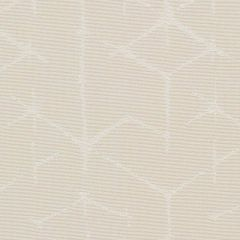 Sunbrella Kanoko Natural KAN J208 140 European Collection Upholstery Fabric