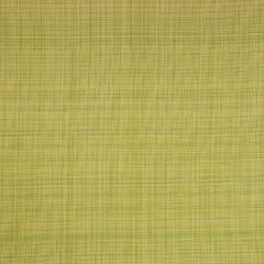 Fabricut Bella Dura Rantiki-Lime Splash 68101 Upholstery Fabric