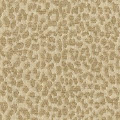 Kravet Contract Hutcherleigh Creme 32485-16 by Candice Olson Indoor Upholstery Fabric
