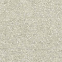 Sunbrella Palazzo Lichen PAL J225 140 European Collection Upholstery Fabric