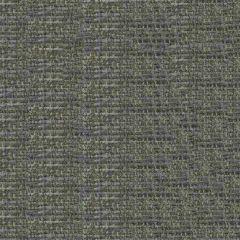 Endurepel Thomas 9006 Battleship Grey Indoor Upholstery Fabric