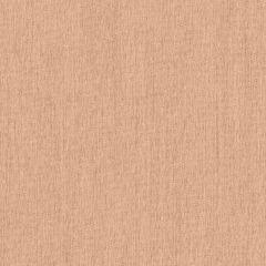 Sunbrella Peach SJA 3962 137 European Collection Upholstery Fabric