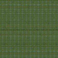 Mayer Longitude Grass 455-003 Hemisphere Collection Indoor Upholstery Fabric