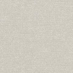 Sunbrella Palazzo Silver PAL J229 140 European Collection Upholstery Fabric