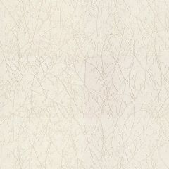 Kravet Vinery Pearl 29902-1 Calvin Klein Collection Indoor Upholstery Fabric