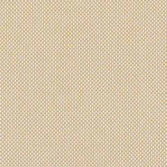Sunbrella Robben Straw ROB R004 140 European Collection Upholstery Fabric