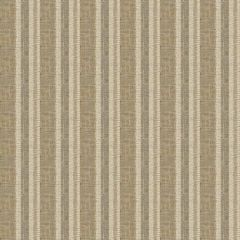 Fabricut Petrichor Amaretto 75962 Casual Chic Collection Drapery Fabric