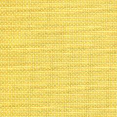 Tempotest Michelangelo 50964-3 Indoor/Outdoor Upholstery Fabric