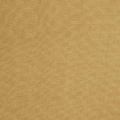 Fabricut Thammarat-Wheat 55709  Decor Fabric