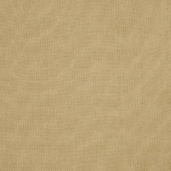 Fabricut Thammarat-Raffia 55702  Decor Fabric