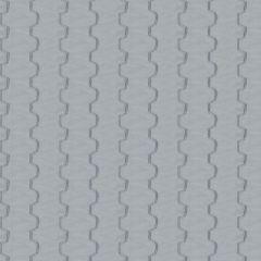 Fabricut Hathaway-Powder 311401  Decor Fabric