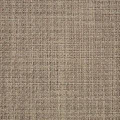 Sunbrella Reed Raffia 50199-0001 Sling Upholstery Fabric