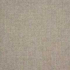 Sunbrella Idol Shale 40487-0014 Upholstery Fabric