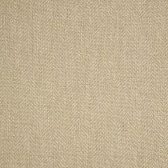 Sunbrella Posh Shitake 44157-0024 Fusion Collection Upholstery Fabric