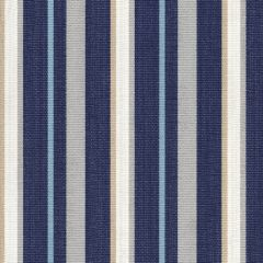 Tempotest Home Fiera Sapphire 5413-75 Fifty Four Collection Upholstery Fabric