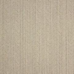 Sunbrella Posh Ash 44157-0013 Fusion Collection Upholstery Fabric