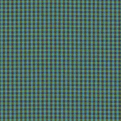 Sunbrella Checks Oliver Green CHE F059 140 European Collection Upholstery Fabric