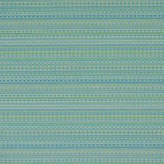 Silver State Sunbrella Calypso Seaside Savannah Collection Upholstery Fabric