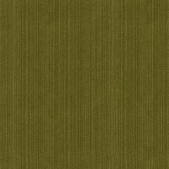 Kravet Contract Strie Velvet 33353-30 Guaranteed in Stock Indoor Upholstery Fabric