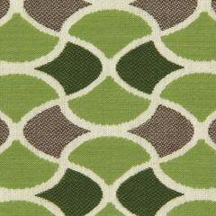 Robert Allen Sunbrella Carrington Lime 228285 Dwell Studio Modern Bungalow Collection Upholstery Fabric
