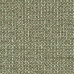 Kravet Contract Accolade Opal 31516-135 Guaranteed in Stock Indoor Upholstery Fabric