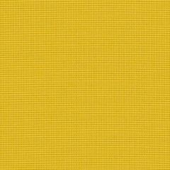 Sunbrella Bengali Yellow BEN 10156 140 European Collection Upholstery Fabric