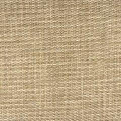 Phifertex Echo Valley Sadat EH6 54-inch Cane Wicker Collection Sling Upholstery Fabric
