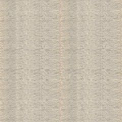 Fabricut Coquina Skin Spun Gold 90741-01 Metallic Nuance Collection Multipurpose Fabric