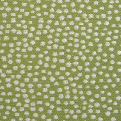 Duralee Bindi-Moss by John Robshaw 15462-257 Decor Fabric