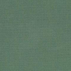 Robert Allen Sunbrella Contract Optima Surf 222241 Upholstery Fabric