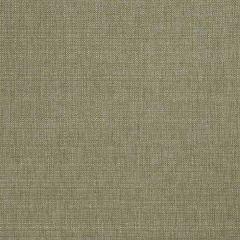 Fabricut Plaza-Lichen 56836  Decor Fabric