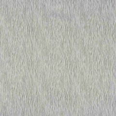 Kravet Basics Stringer Graphite 35058-21 Oceanview Collection by Jeffrey Alan Marks Multipurpose Fabric