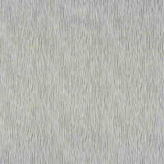 Kravet Basics Stringer Graphite 35058-21 Oceanview Collection by Jeffrey Alan Marks Multipurpose Fabric