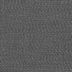 Sunbrella Savane Flanelle SAV J241 140 European Collection Upholstery Fabric