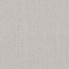 Sunbrella Savane Silver SAV J239 140 European Collection Upholstery Fabric