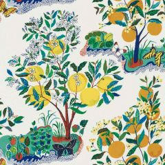F Schumacher Citrus Garden Primary 177330 Indoor / Outdoor Prints and Wovens Collection Upholstery Fabric