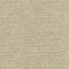 Kravet Couture Fossil 33258-16 Multipurpose Fabric