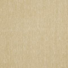 Fabricut Tonsay-Raw 63901  Decor Fabric