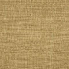 Fabricut Bella Dura Rantiki-Rattan 68104 Upholstery Fabric