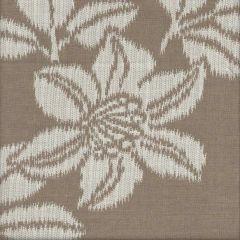 Sunbrella Eden Wicker SUF1345-24 Watercolor Collection Upholstery Fabric