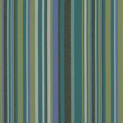 Sunbrella by Mayer Infinity Peacock 415-014 Imagine Collection Upholstery Fabric