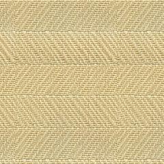 Kravet Couture Herringbone Raffia Driftwood 21773-11 Indoor Upholstery Fabric