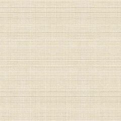 Kravet Smart White 33358-1 Soleil Collection Upholstery Fabric