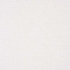 Sunbrella Nurture White 42102-0001 Balance Collection Upholstery Fabric
