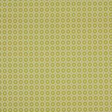 Clarke and Clarke Tuman Citron F0935-04 Multipurpose Fabric