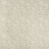 Kravet Olivos Fawn 4474-16 Malibu Collection by Sue Firestone Drapery Fabric
