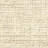 Stout Database Sand 1 Solid Foundations Collection Indoor Upholstery Fabric